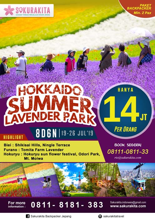 hokaido-summer-lavender-park