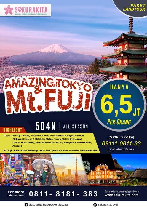 Amazing-of-Tokyo-Mt-Fuji