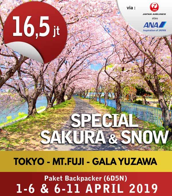 [THUMB]-Special-Sakura-&-Snow-1-6-&-6-11-Apr-2019