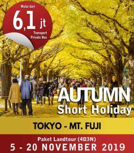 Autumn-in-Tokyo-Mt-Fuji-(4D3N)