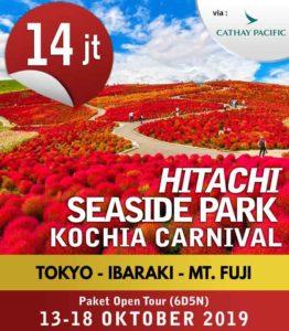 [THUMB]Hitachi-Seaside-Park-Kochia-Carnival-13-18-Oktober-2019-(6d5n)