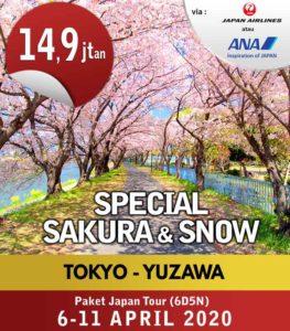 Special-Sakura-&-Snow-6-11--Apr-2020-update-pricelist